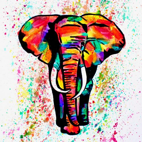 Elephant Canvas Painting
